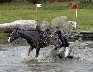 korsförlamning häst behandling